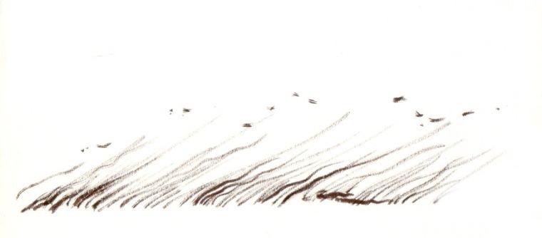 WIND (felt-tip pens, 30x10)